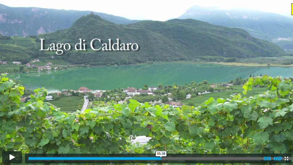 "The Wines of ""Alto Adige"" ""Italy"""